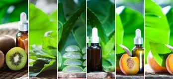 Bio- frutti e collage organici degli oli vegetali fotografie stock