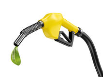 Bio fuel concept Royalty Free Stock Photo