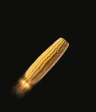 Bio Fuel Corn Cob. Rocket, Flying with Fireworks, Studio Isolated on Black Background Stock Photography