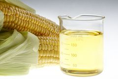 Bio fuel still life Stock Images