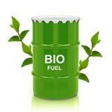 Bio- gallone del combustibile fotografie stock