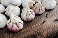 Bio garlic from bio herbs garden Royalty Free Stock Photos
