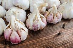 Bio garlic from bio herbs garden Stock Photography
