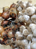 Bio garlic and onions Stock Photo
