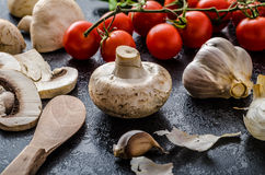 Bio garlic, spices and wild mushrooms from the home garden. Olive oil, simple composition Stock Photos