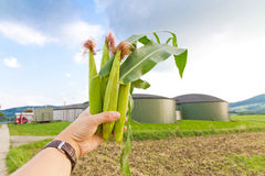 Bio gas energy Stock Images