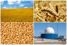 Bio gas production Stock Photos