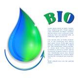 Bio- goccia di acqua Fotografie Stock