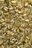 Bio grains de préparation de céréale Photographie stock libre de droits