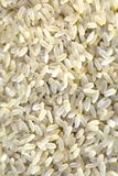 Bio grains de riz photos libres de droits