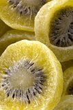 Bio grands kiwis déshydratés Images stock