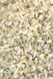 Bio- grani del riso fotografie stock libere da diritti
