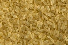 Bio- grani del riso immagine stock libera da diritti