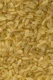 Bio- grani del riso fotografia stock