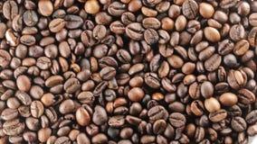 Bio granos de café del Brasil almacen de metraje de vídeo