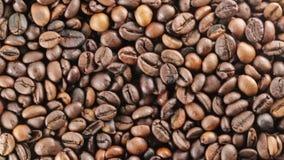 Bio granos de café del Brasil almacen de video