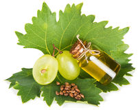 Bio grape seed oil Stock Photos