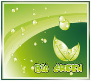 Bio Green Background Royalty Free Stock Photography