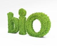 Bio green leafs Royalty Free Stock Image