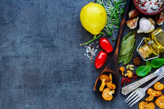 Bio Healthy food. Tasty and fresh vegetables on slate vintage background. Bio Healthy food, herbs and spices for health cooking. Organic vegetables on slate Royalty Free Stock Images