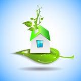 Bio house. Green house icon. Vector illustration of bio house Stock Photos
