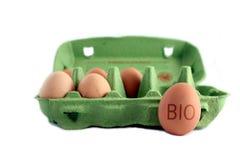 Bio huevos Imagen de archivo libre de regalías