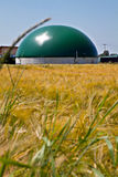 Bio- impianto di gas in un campo di grano Immagine Stock Libera da Diritti