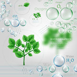 Bio infographics. The illustration of beautiful bio infographics with water cycle scheme. Ecology set with oxygen, water and carbon dioxyde molecules Stock Photography