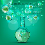 Bio infographics Royalty Free Stock Images