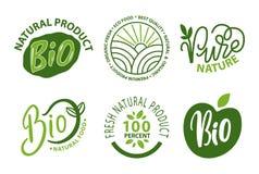 Bio- ingredienti, mele e foglie dell'alimento biologico royalty illustrazione gratis