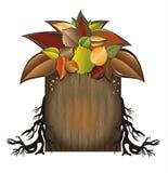 Bio jardin d'arbre d'automne   Photographie stock libre de droits