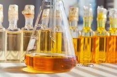 bio laboratorium Royaltyfri Bild