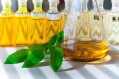 bio laboratorium Royaltyfri Fotografi