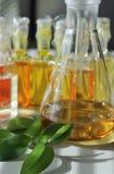 bio laboratorium Royaltyfria Foton