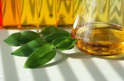 Bio laboratorium Royalty-vrije Stock Foto's