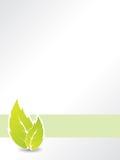 Bio leaf brochure Stock Photo