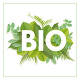 BIO letter with leaves Royalty Free Stock Photography