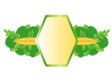 Bio llabel, frame for text, vector Stock Photos