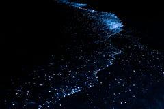 Bio luminiscencia Iluminación del plancton en Maldivas Muchos equiparan foto de archivo