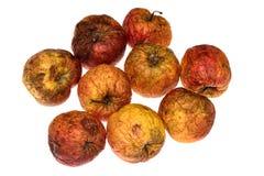 Bio maçãs extremas Imagens de Stock