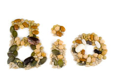 BIO made from various seeds. On white background Royalty Free Stock Photos