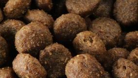 Bio mat för hundkapplöpning stock video
