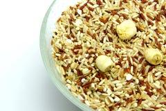 Bio mat: Organiska ris för blandning på vit bakgrund Royaltyfri Foto
