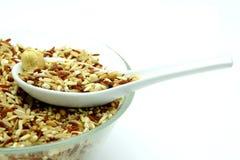 Bio mat: Organiska ris för blandning på vit bakgrund Royaltyfria Foton