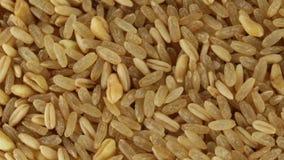 Bio mistura do cereal vídeos de arquivo