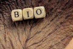 Bio mots sains et de mode de vie de vegan de symbole sur la feuille images stock