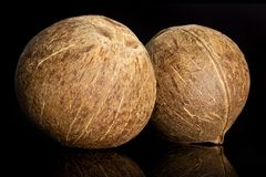 Bio- noce di cocco fresca isolata su vetro nero immagine stock