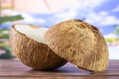 Bio- noce di cocco fresca sulla vocazione fotografie stock