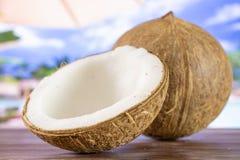 Bio- noce di cocco fresca sulla vocazione fotografie stock libere da diritti