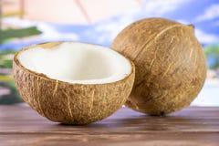 Bio- noce di cocco fresca sulla vocazione immagini stock
